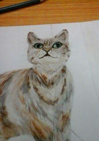 Cat, painting, water colour