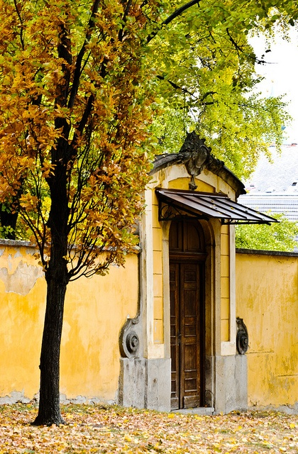 Eger by szelídgesztenye A volt  Népkert bejárata:-)