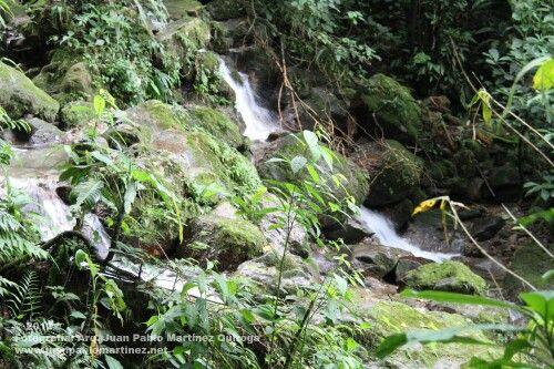 Nacimiento de los ríos y cascadas en el llano Colombia