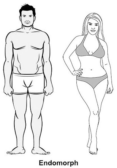 Losing Weight: Common Mistakes Endomorphs Make     Nutrition Warehouse Canada