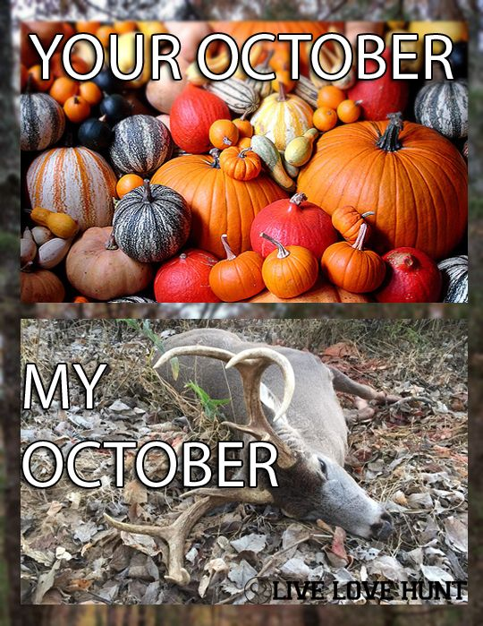 Your October, My October | Live Love Hunt | Hunting | Deer Season