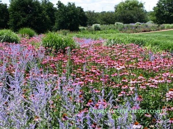 Flower Garden Ideas Illinois 152 best illinois - chicago botanical gardens images on pinterest