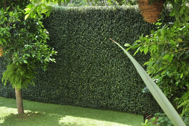 25 best ideas about jardin vertical artificial en for Muros verdes naturales