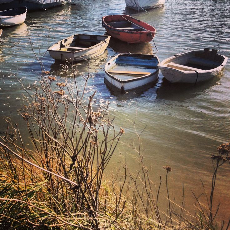 Aged Rowing Boats