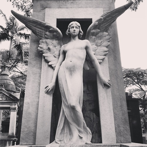 Androgynous angel sculpture at Araça's Cemetery  Sao Paulo / Brazil
