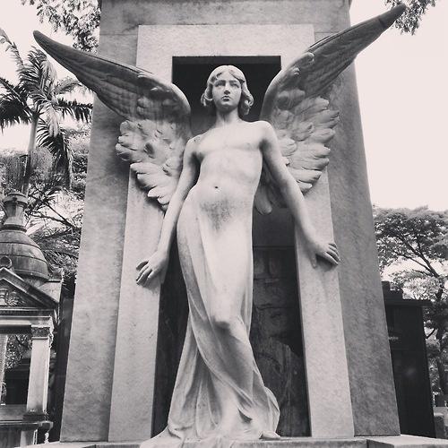 Androgynous angel sculpture at Araça's Cemetery  Sao Paulo / Brazil