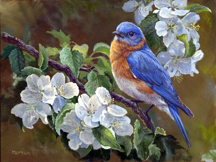 Bluebird & Blossoms painting by Laura Mark-Finberg