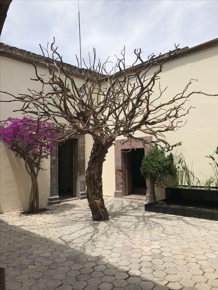 M s de 25 ideas nicas sobre arbol seco en pinterest rboles con flores blancas arreglos de - Como decorar un arbol seco ...