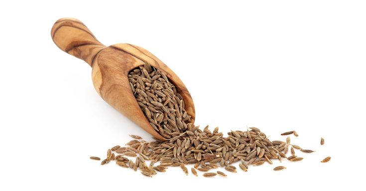 If you have tried Indian cuisine then you will be aware of the significance of Fennel seeds. It is religiously used in Indian kitchens and other traditional cuisines across a variety of recipes, passed on from generations. Fennel, the herb, belongs to the Umbellifereae family and is therefore closely related[.....]