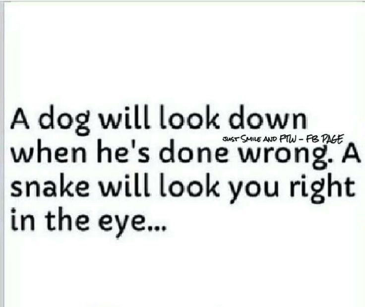 This is the truth. He could look me dead in the eyes and lie and lie and lie!!!!