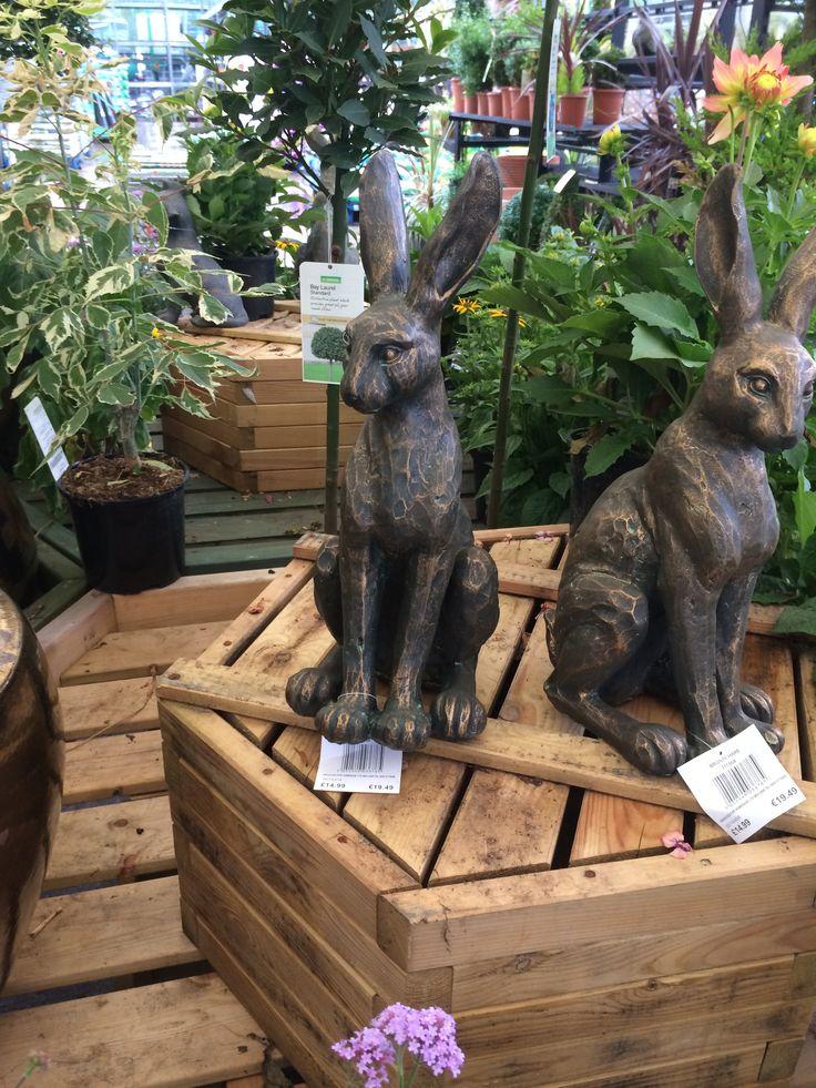 Pot (bronzed) hare