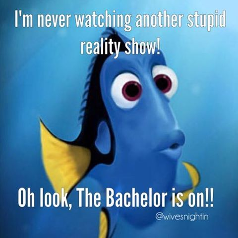 I'm never watching another stupid reality show! Oh look, The Bachelor is on! TV @wivesnightin