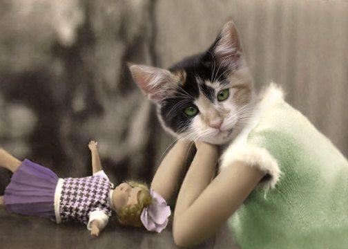 Alterato di Callie, Cat stampa, antropomorfi, capricciosa, arte Collage, gatto dell