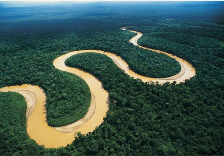 Verdens største regnskov Amazonas i Brasilien med den mægtige Amazonflod.