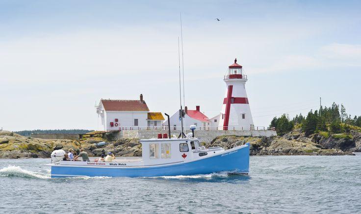 L'équipe de sauvetage de baleines de Campobello vous invite à une croisière d'observation de baleines, de phoques et d'oiseaux dans la baie de Fundy. Island Cruises Whale-Watching | Nouveau Brunswick, vacances au Canada #ExploreNB