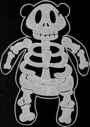 Teddyberen ziekenhuis. Röntgenbeelden van allerlei knuffels.  X-rays from different toys