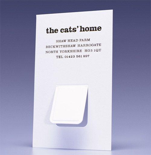Cat flap!