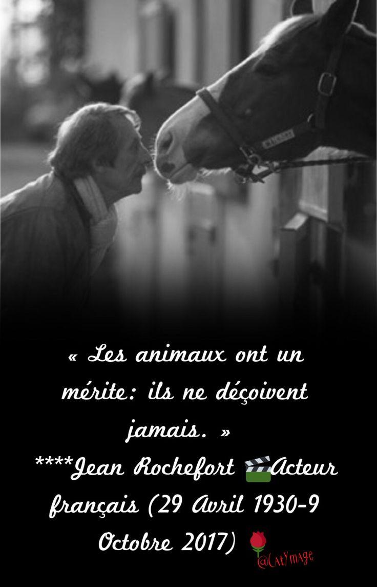 « Les animaux ont un mérite:  ils ne déçoivent jamais. »  ****Jean Rochefort Acteur français (29 Avril 1930-9 Octobre 2017)