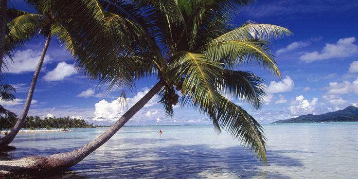 Vacances d'été: les meilleures périodes pour réserver