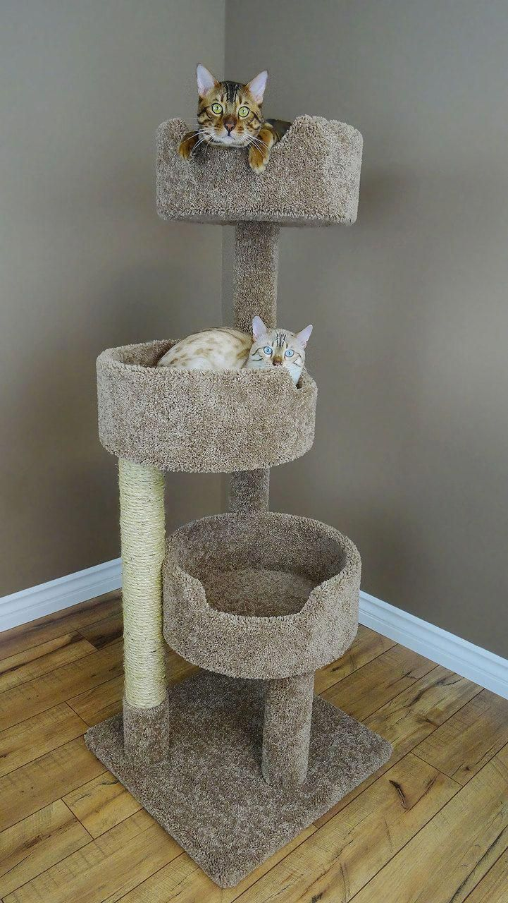 Cat Trees New Cat Condos Deluxe Kitty Pad Dogaccessories Cat Towers Cat Tree