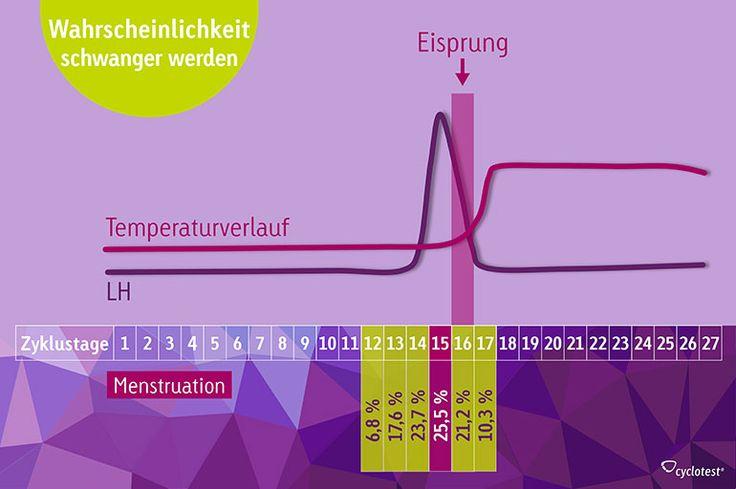 Die Grafik zeigt, wann man schwanger werden kann und an welchen Tagen die Wahrscheinlichkeit zum schwanger werden am höchsten ist.
