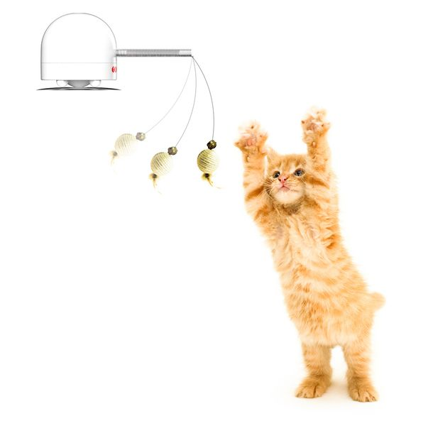 Automated Cat Toys : Twitch automatic teaser cat toy furbabies