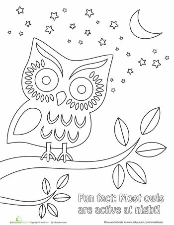 Worksheets: Nighttime Owl Coloring Page