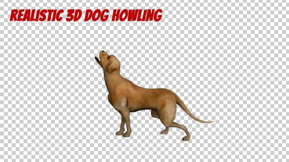 Realistic 3D Dog Howling Animation