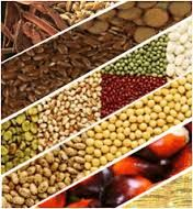 Open Online-Offline Trading Account with Swastika Investmart: Agri Commodity Trading Report 05 October