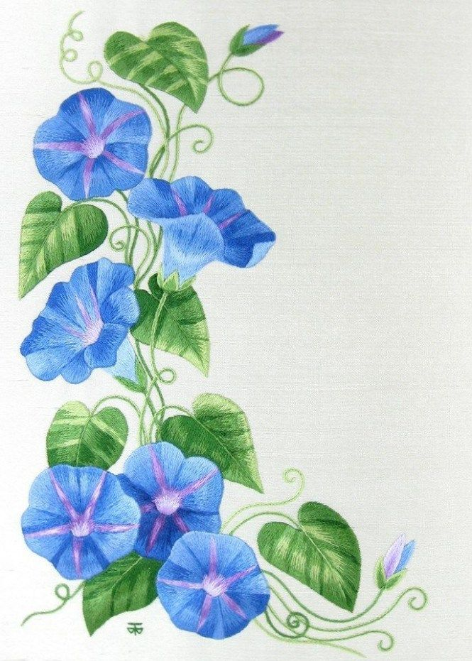 Morning Glory Print Blue Flowers Botanical Floral Art By Janet Etsy In 2020 Botanical Floral Art Flower Art Floral Painting