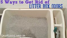 Love cats but hate the stinky litter box odors that just never seem to go away no matter what you do? Check out these 5 Ways to Get Rid of Litter Box Odors