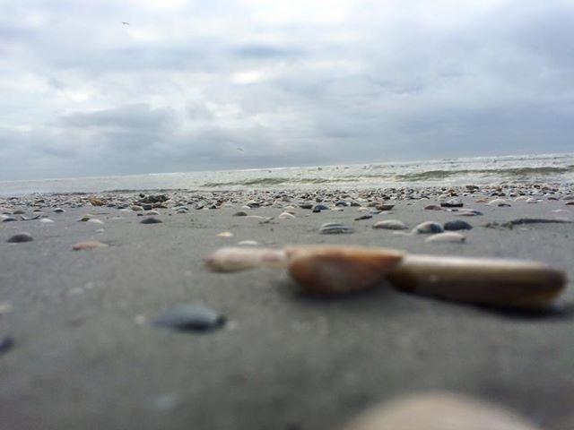 hollum strand