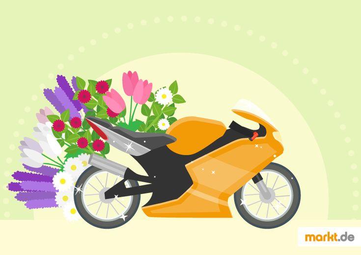 motorrad pflege f r den sommer motorrad sommer und pflege. Black Bedroom Furniture Sets. Home Design Ideas