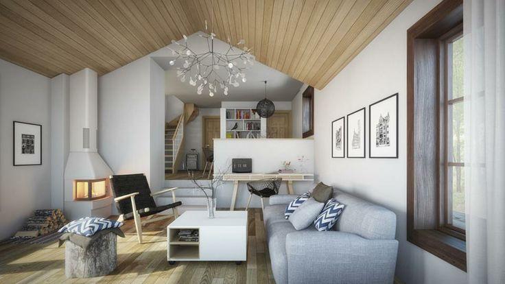 Projekt oraz wizualizacje: Milan Stevanovic, Architectural ID, Ilija Todorovic