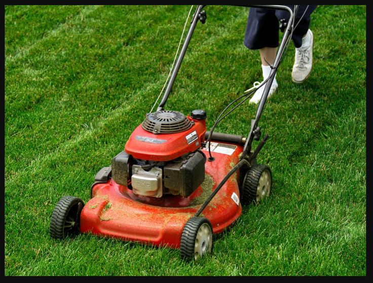 Tips for Buying a Corded or Cordless Electric Lawn Mower