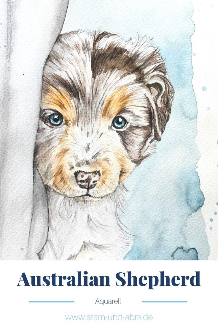 388 best s e hunde images on pinterest animals puppies. Black Bedroom Furniture Sets. Home Design Ideas