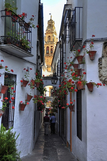 Narrow Street, Andalusia, Spain~The land of Don Quixote~Southern Spain is picturesque with its white houses and inner courtyards with beautiful fountains! Cordoba..Espana.