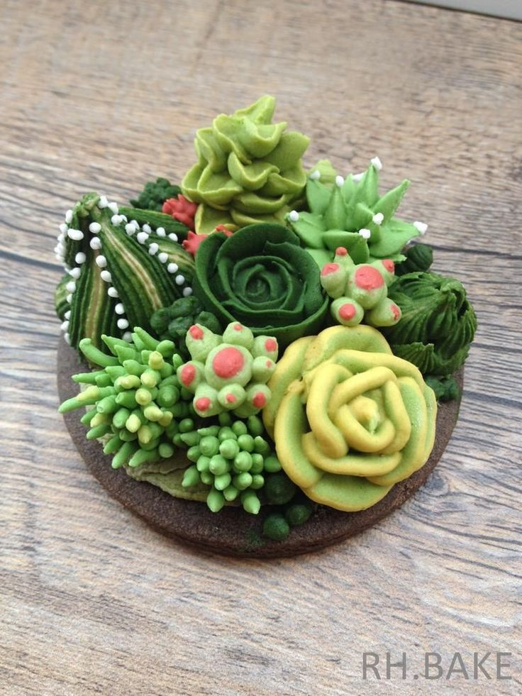 Hand piped succulents and cactus on a cookie by RH. Bake,  wow!  Cookie Connection
