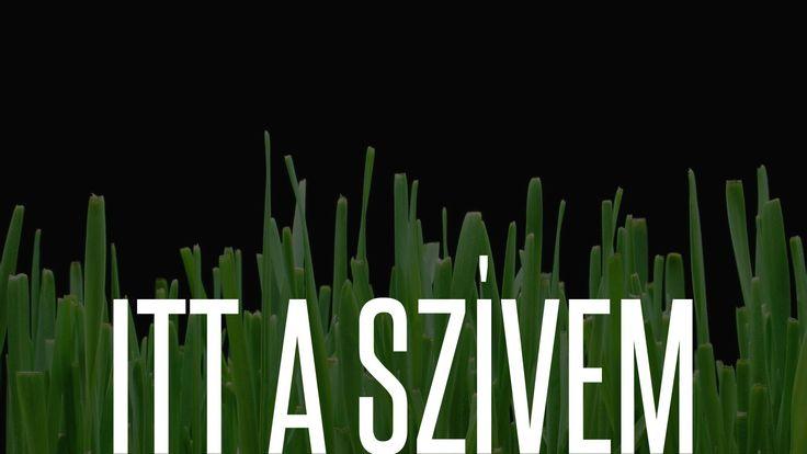 ITT A SZÍVEM - DOBNER ILLÉS feat. DOBNER ÉVI