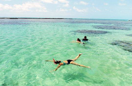 Piscinas de Maragogi, em Alagoas, conhecido como o Caribe brasileiro. Famoso pelo mar de águas calmas e por ter a segunda maior formação de recifes de corais do mundo.