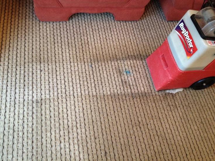 Vinegar Carpet Stains Images Clean