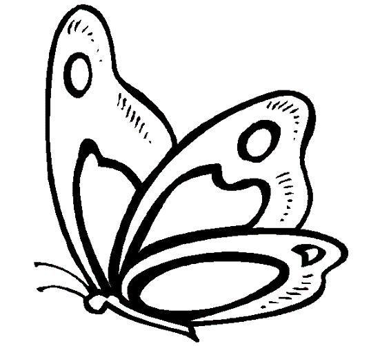 Mi Colección De Dibujos Lindas Mariposas Para Colorear