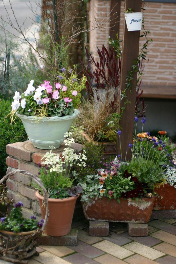 玄関出てすぐ右側です。 こうして写真で見ると花のバランスが悪い鉢がすぐ分かりますね^^; 黄色のパンジーの鉢、少し寂しい感じなので何か足さなくては。。...