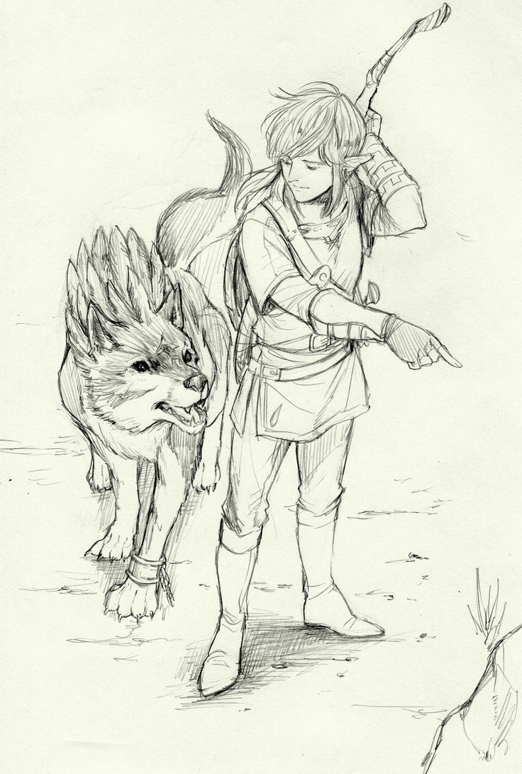 The Legend of Zelda | Breath of the Wild | Link and Wolf Link