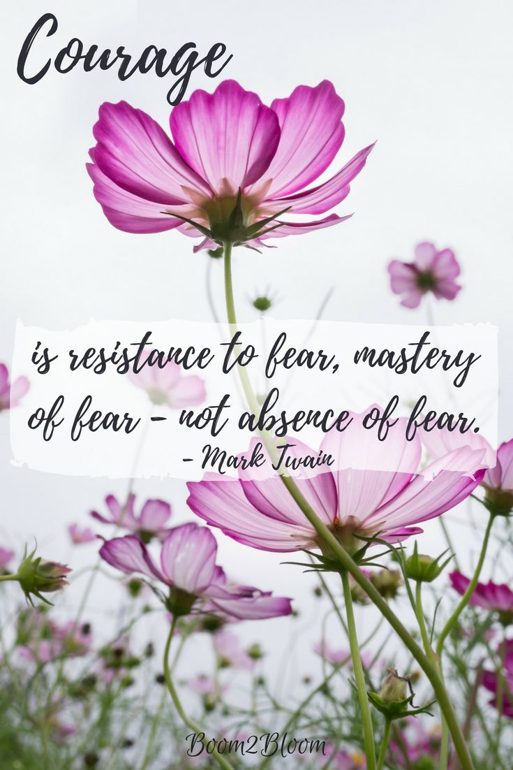 Courage is resistance to fear, mastery of fear - not absence of fear quote by Mark Twain. Inspirational Quote #InspirationalQuote #Courage #Quotes