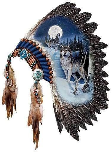 beautiful painted war bonnet