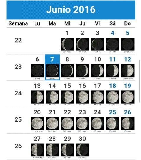 Las 25 mejores ideas sobre calendario lunar junio en for Calendario lunar junio