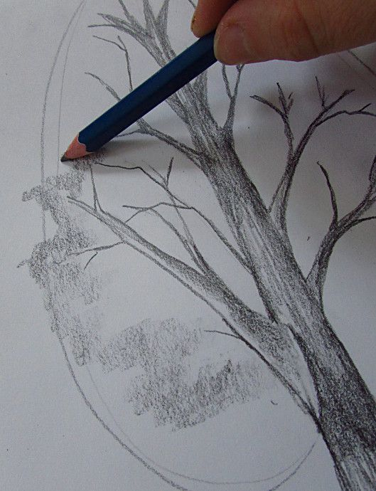 How To Draw A Tree –