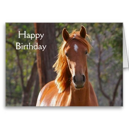 Chestnut horse beautiful photo happy birthday card.  Click on image to change or delete text to suit your requirements