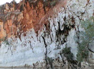 A touch of RED to offset the white limestone at Geikie Gorge's East Wall.  Western Australia
